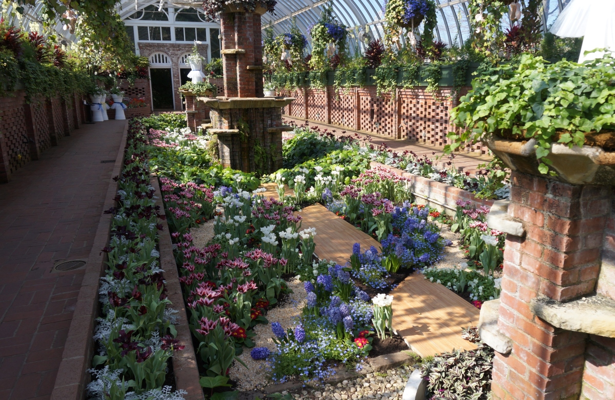 Phipps Conservatory's Spring Flower Show: Masterpieces in Bloom